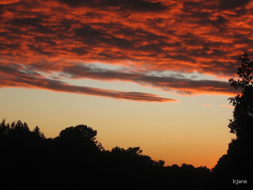 Little Pink Clouds 4 U & me by lcjane