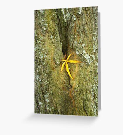 A Perfect Leaf Greeting Card