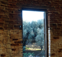 A View to the Olive Grove Sticker