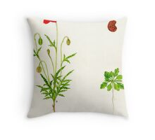 Common Poppy - Papaver rhoeas Throw Pillow