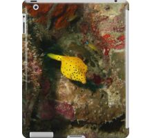 Yellow Boxfish iPad Case/Skin