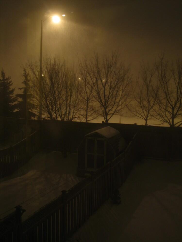 Winter night  by farhee