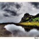 Black Sands of Karekare by Ant Vaughan