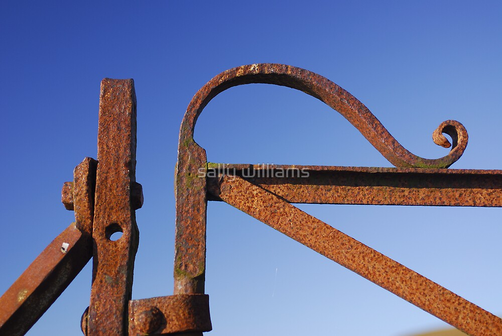 Rusty gate by sally williams
