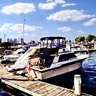 Wiggins Park Marina by Susan Savad