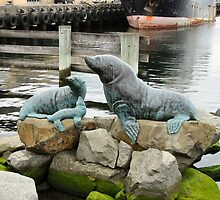 Seals by heartbeatoz