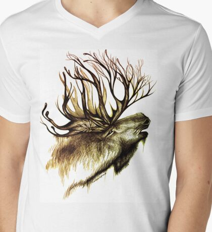 Mountain Spirit Mens V-Neck T-Shirt