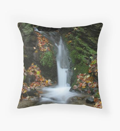 Colors of Autumn - Waterfall Throw Pillow