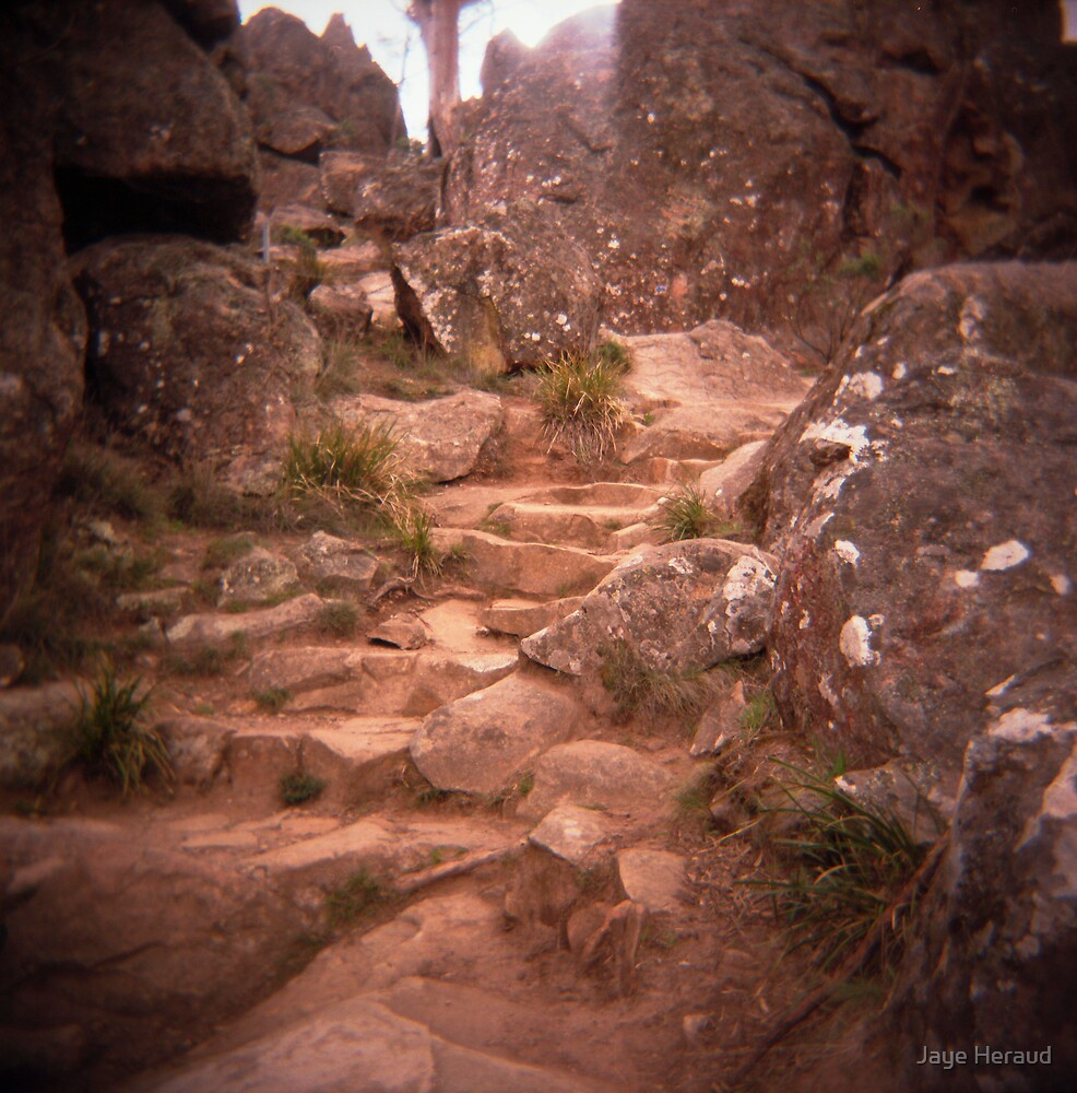 choose your path by Jaye Heraud