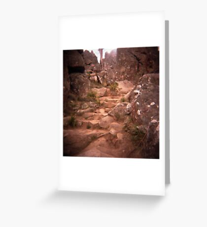 choose your path Greeting Card