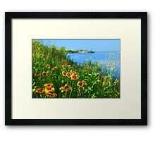 Wild flowers on seashore Framed Print