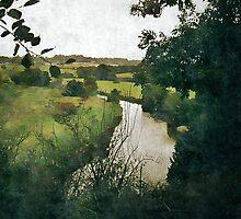 Boyne River View by Dermot O'Mahony