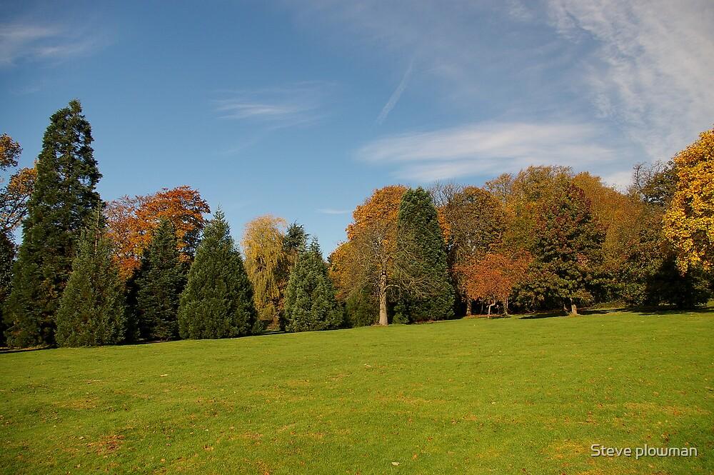 The Arboretum by Steve plowman