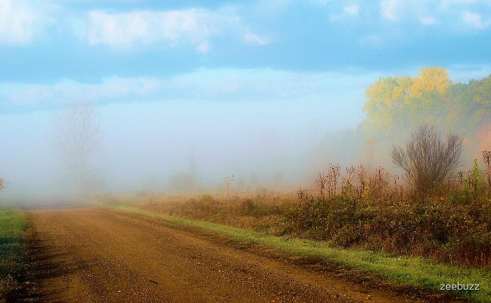 Old Road by zeebuzz