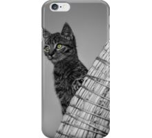 Curiosity and the Cat iPhone Case/Skin