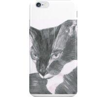 Felix the Cat Portrait iPhone Case/Skin