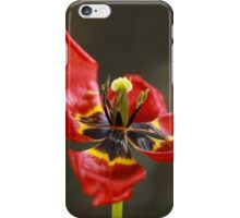 A single tulip dance iPhone Case/Skin