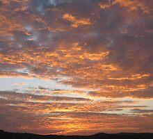 October Sunrise by Tina Miller