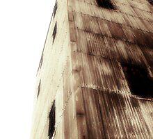 derelict by alistair mcbride