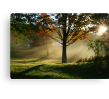 REDREAMING SILENCE IN THE SUN Canvas Print