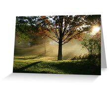 REDREAMING SILENCE IN THE SUN Greeting Card