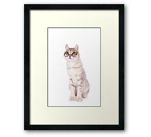Smart Cat in Glasses Framed Print
