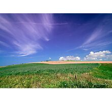 Sea of grass - 2 Photographic Print