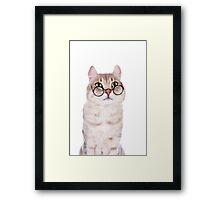 Cat In Glasses Framed Print