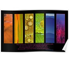 Natural Splendors I Poster