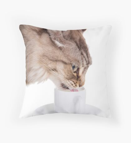Cat Drinking From Cup Throw Pillow