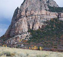 Thimble Rock by bluerabbit