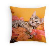 Fall Kitten Throw Pillow