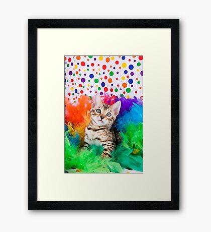 Party Bengal Kitten Framed Print