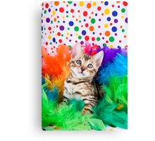 Party Bengal Kitten Canvas Print