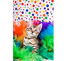 Party Bengal Kitten Photographic Print