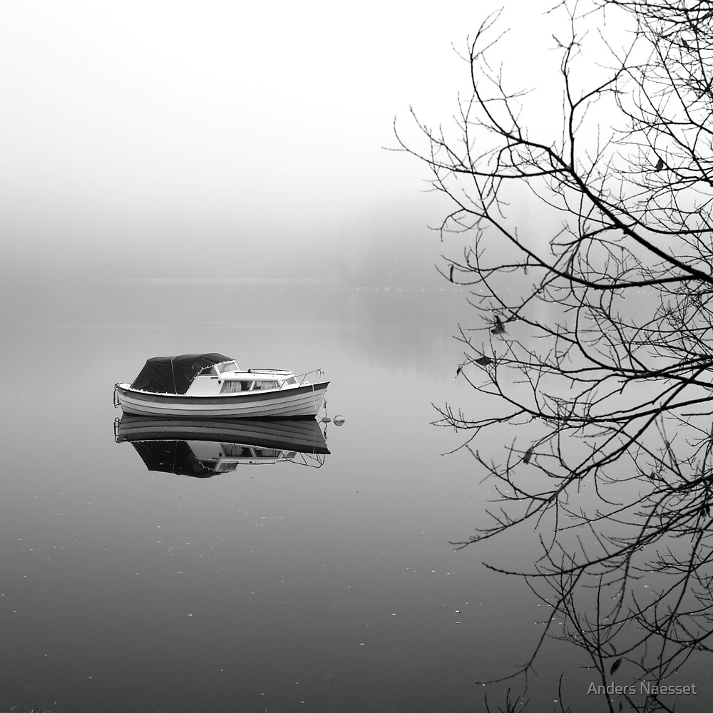 Boat, Fog and Tree by Anders Naesset
