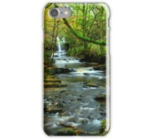 Bow Lee Beck iPhone Case/Skin