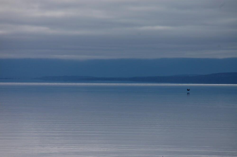 Lake Te Anau, NZ by Rudolf