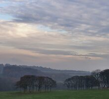 Late Afternoon Light In Temple Newsam by Jazzdenski