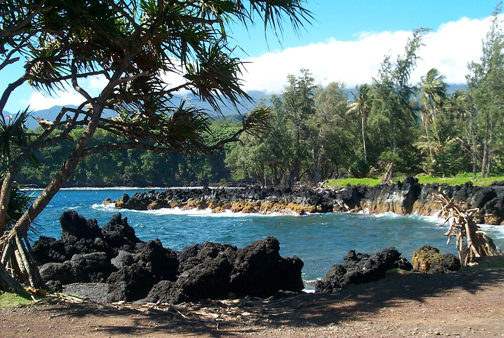 Maui Inlet by StudioN