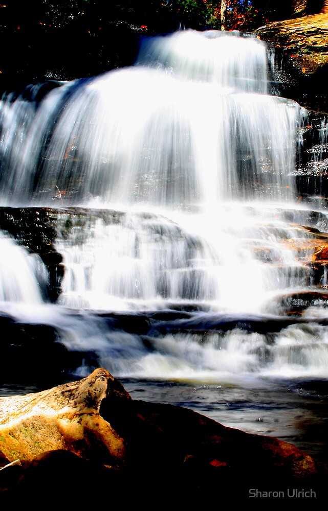 Waterfall by Sharon Ulrich