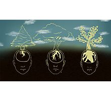 3 Stages- Planting Trees Photographic Print