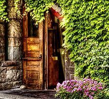 The door by Mike  Savad