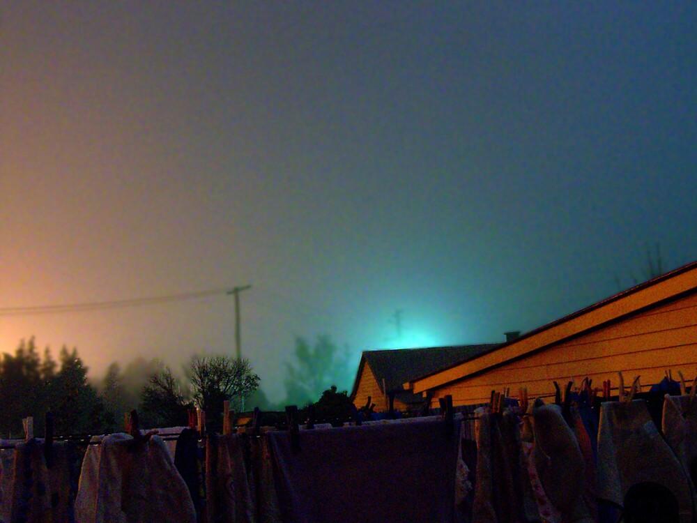 Backyard Mist. by aperture