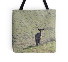 Hill Side Stag Tote Bag