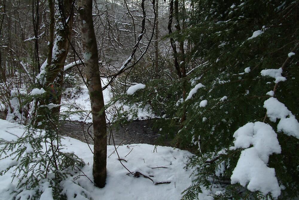 Boggs Creek II by allenmay60