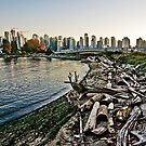 City Logs by Dave Seeram