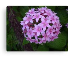 FLOWER BALL Canvas Print