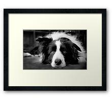 Jessie Framed Print