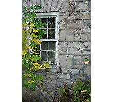 Overgrown History Photographic Print
